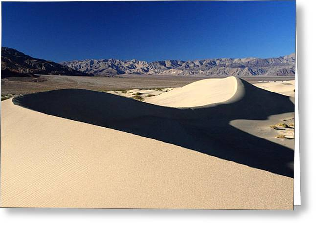Sand Dunes National Park Greeting Cards - Mesquite Sand dunes in Death Valley National park Greeting Card by Pierre Leclerc Photography