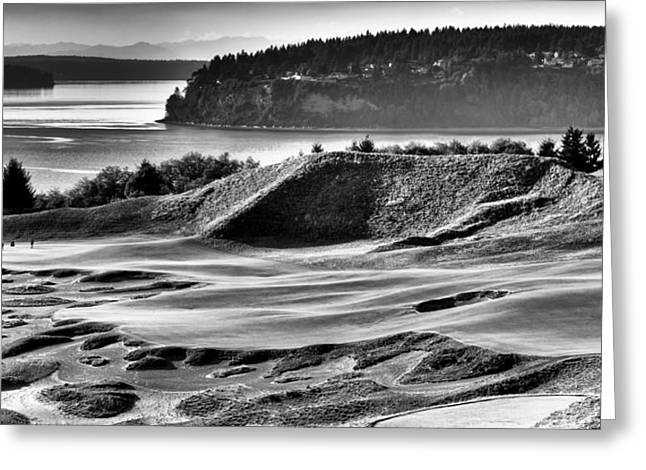 Us Open Greeting Cards - #14 Panorama - Chambers Bay Golf Course Greeting Card by David Patterson