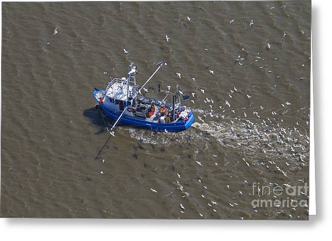 Prawn Boat Greeting Cards - 150403p220 Greeting Card by Arterra Picture Library