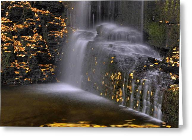 Fall Colors Greeting Cards - Waterfall Detail Greeting Card by Stephen  Vecchiotti