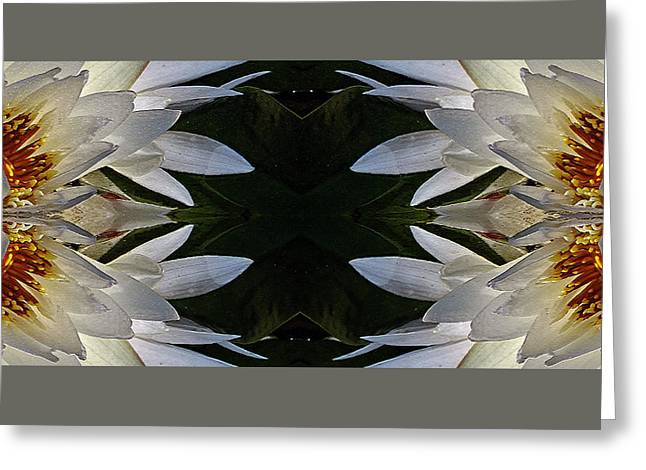 Nature Center Pond Greeting Cards - White Lotus Mandala Greeting Card by Daniel Unfried