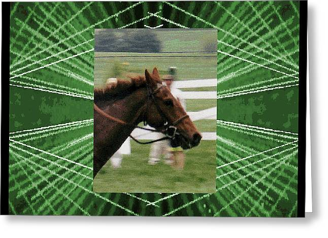 Race Horse Greeting Cards - Digital Artistry Greeting Card by Stephen Gredler