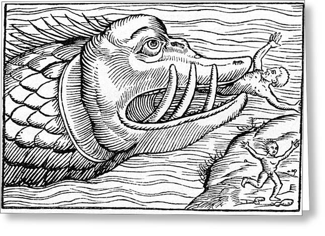 Sea Monster Mythology Greeting Cards - 16th Century Woodcut Print Greeting Card by Cci Archives