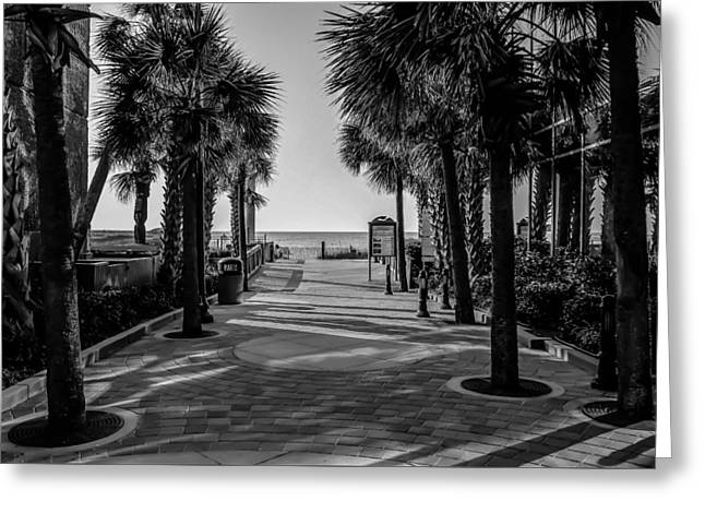 Beach At Night Greeting Cards - Myrtle Beach South Carolina Greeting Card by Alexandr Grichenko