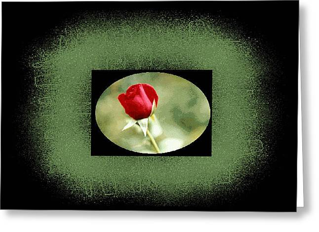 Textile Photographs Greeting Cards - Digital Artistry Greeting Card by Stephen Gredler
