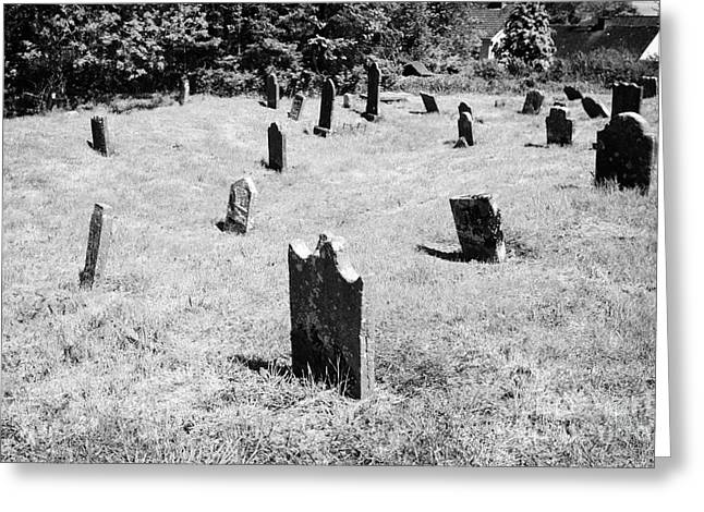 Headstones Greeting Cards - 17th And 18th Century Headstones In Tydavnet Old Cemetery County Monaghan Republic Of Ireland Greeting Card by Joe Fox