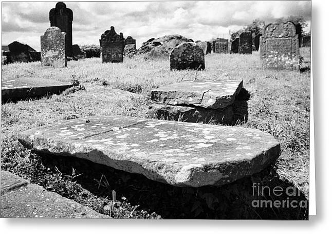 Headstones Greeting Cards - 17th And 18th Century Tombs And Headstones In Tydavnet Old Cemetery County Monaghan Republic Of Irel Greeting Card by Joe Fox