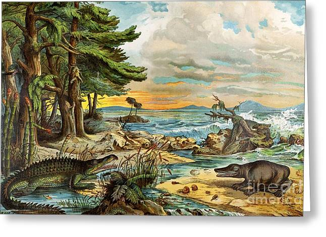 Schubert Greeting Cards - 1888 Color Lithograph Of Triassic Coast Greeting Card by Paul D. Stewart