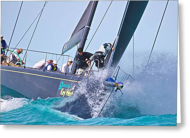 Destiny Photographs Greeting Cards - Key West Action Greeting Card by Steven Lapkin