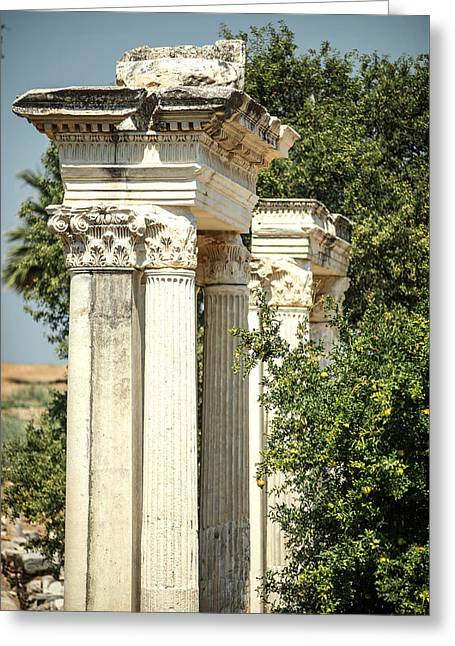 Civilization Greeting Cards - Turkey Ephesus ruins of the ancient roman city Greeting Card by Eduardo Huelin