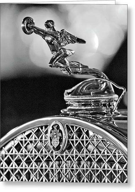 Mascot Photographs Greeting Cards - 1931 Packard Convertible Victoria Hood Ornament 2 Greeting Card by Jill Reger