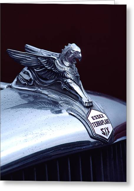 Mascot Photographs Greeting Cards - 1933 Hudson Essex Terraplane Griffin Hood Ornament Greeting Card by Carol Leigh