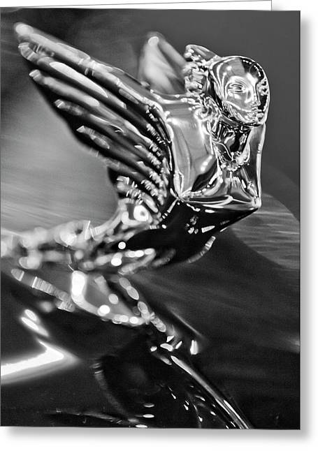 Best Stock Photos Greeting Cards - 1938 Cadillac V16 Hood Ornament Greeting Card by Jill Reger