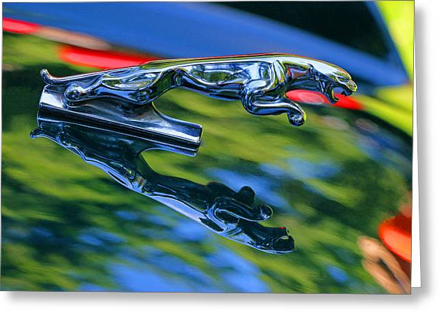 Collector Hood Ornament Greeting Cards - 1995 Jaguar X J S Hood Ornament Greeting Card by Allen Beatty
