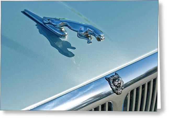 Hoodies Greeting Cards - 1995 Jaguar XJ6 Sedan Hood Ornament Greeting Card by Jill Reger