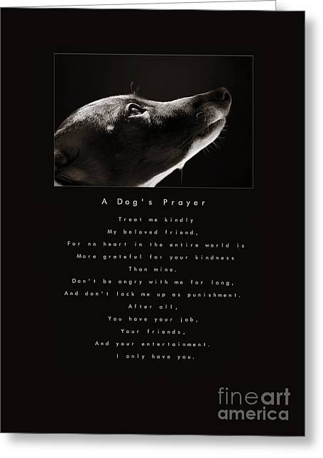 A Dog's Prayer Greeting Card by Angela Rath