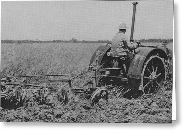 Farmers Field Greeting Cards - A Farmer Driving a Tractor Greeting Card by American School