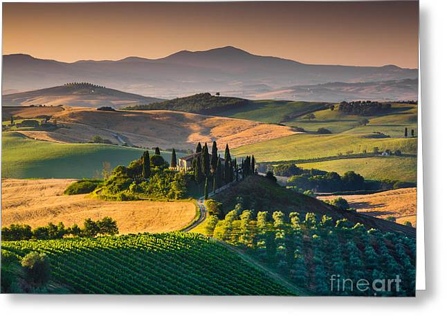 Tuscan Hills Greeting Cards - A Morning in Tuscany Greeting Card by JR Photography