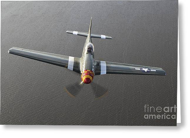North American Aviation Greeting Cards - A North American P-51 Mustang In Flight Greeting Card by Daniel Karlsson