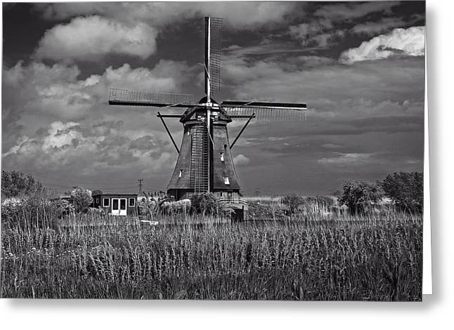 Windmill And Tree Greeting Cards - A Windmill In Holland Greeting Card by Brad Ko