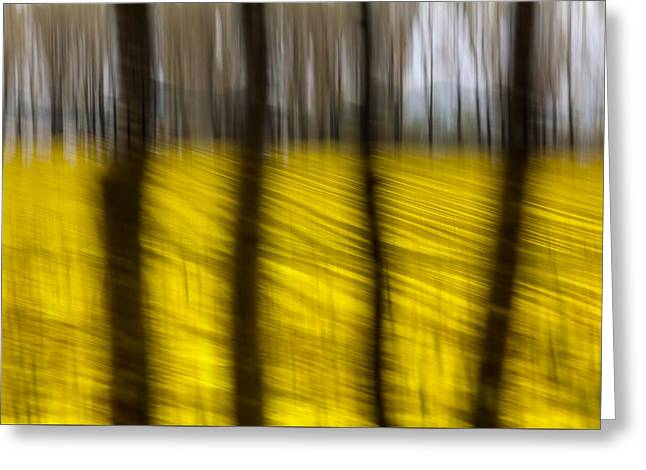 Abstractions Greeting Cards - Abstract rape field Greeting Card by Heinz Dieter Falkenstein
