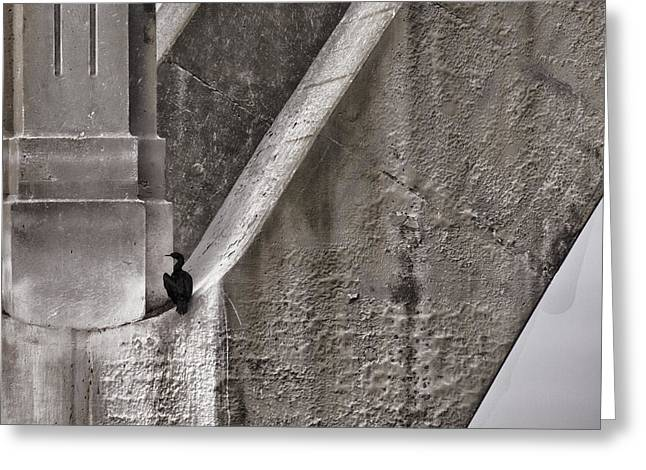 Cormorants Greeting Cards - Architectural Detail Greeting Card by Carol Leigh