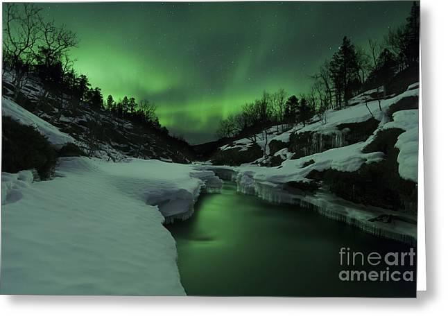 Star Valley Greeting Cards - Aurora Borealis Over Tennevik River Greeting Card by Arild Heitmann