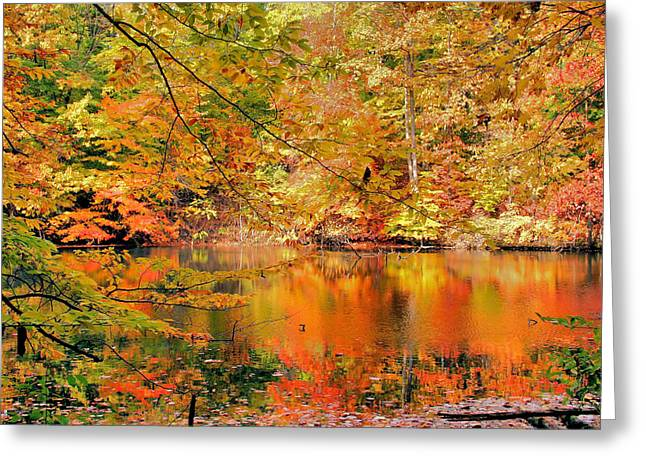 Cuyahoga River Greeting Cards - Autumn Reflections Greeting Card by Kristin Elmquist