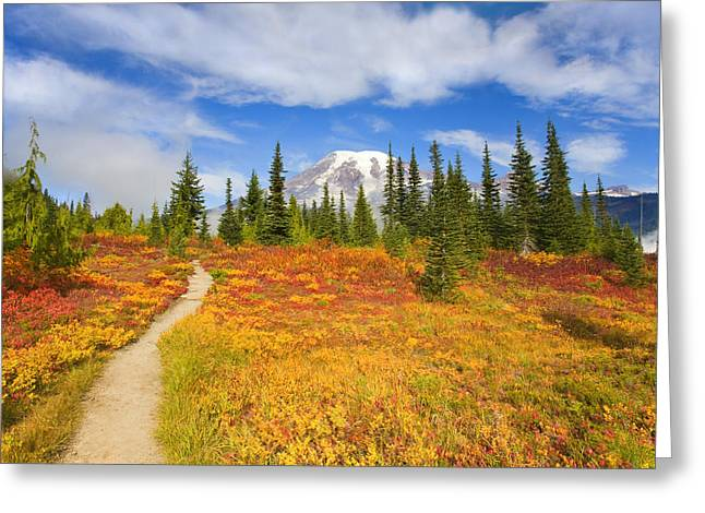 Mt Photographs Greeting Cards - Autumn Trail Greeting Card by Mike  Dawson