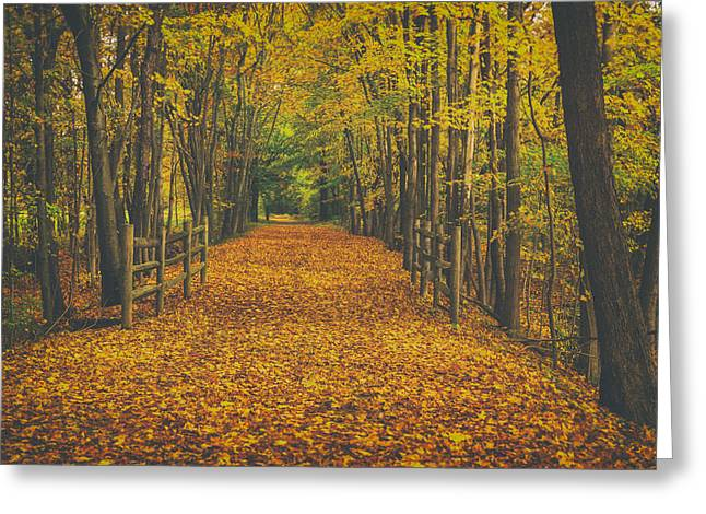 Autumns Path Greeting Card by Karol Livote