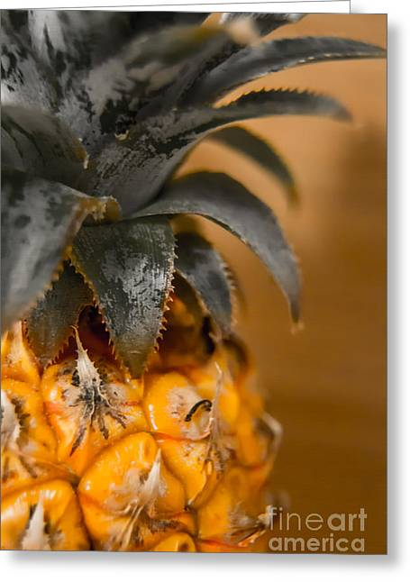 Pineapple Pyrography Greeting Cards - Baby Pineapple Greeting Card by Olga Photography