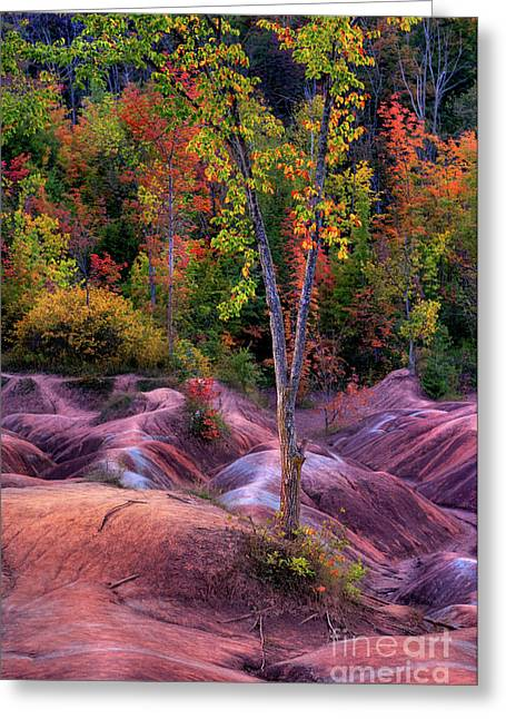 Red Clay Greeting Cards - Badlands Greeting Card by Oleksiy Maksymenko