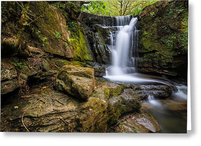 Woodland Scenes Greeting Cards - Beautiful Flowing Waterfall In The Edenfield Forest. Greeting Card by Daniel Kay