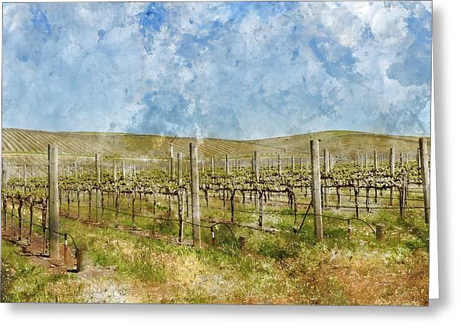 Beautiful Vineyard In Napa Valley Greeting Card by Brandon Bourdages