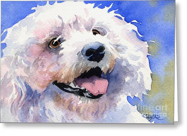 Toy Dog Greeting Cards - Bichon Frise Greeting Card by David Rogers