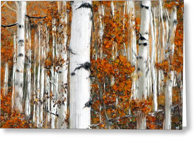 Harvest Art Greeting Cards - Birches Greeting Card by Bruce Nutting