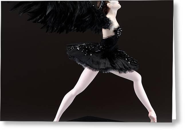Black Swan  Greeting Card by Vickie Arentz