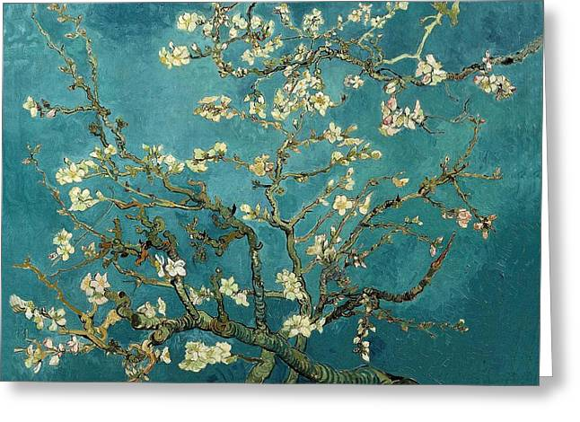 Vincent Van Gogh Greeting Cards - Blossoming Almond Tree Greeting Card by Vincent Van Gogh