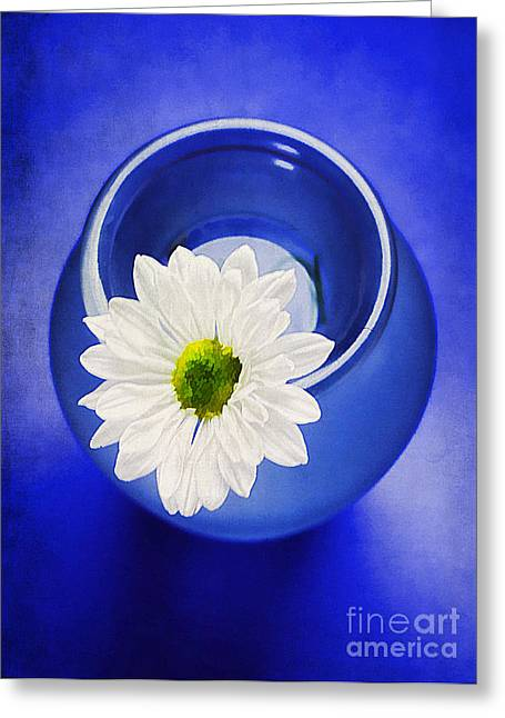 Decorative Floral Photographs Greeting Cards - Blue Greeting Card by Darren Fisher