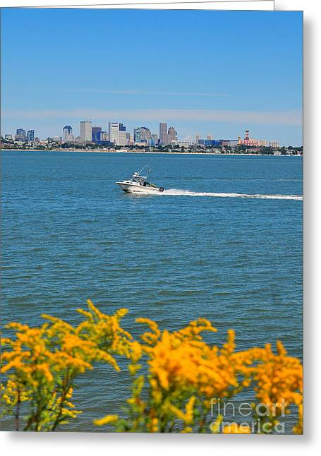 The Bean Greeting Cards - Boston Harbor Greeting Card by Catherine Reusch  Daley