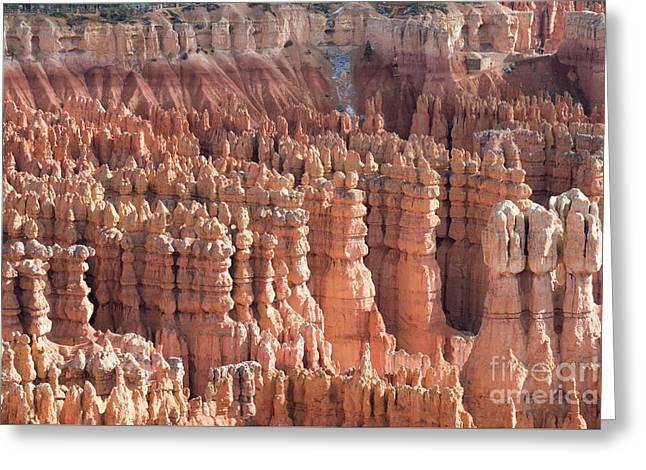 Bryce Canyon Greeting Card by Juli Scalzi