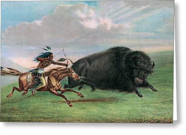 Buffalo Hunt Greeting Card by George Catlin
