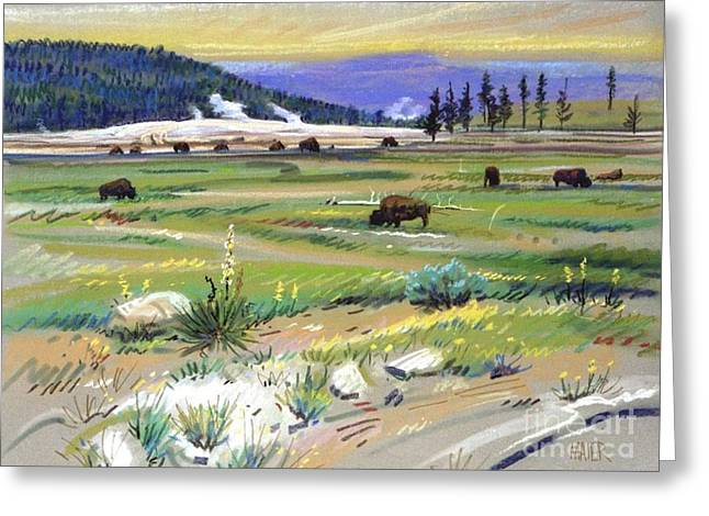 Buffalo Greeting Cards - Buffalo in Yellowstone Greeting Card by Donald Maier