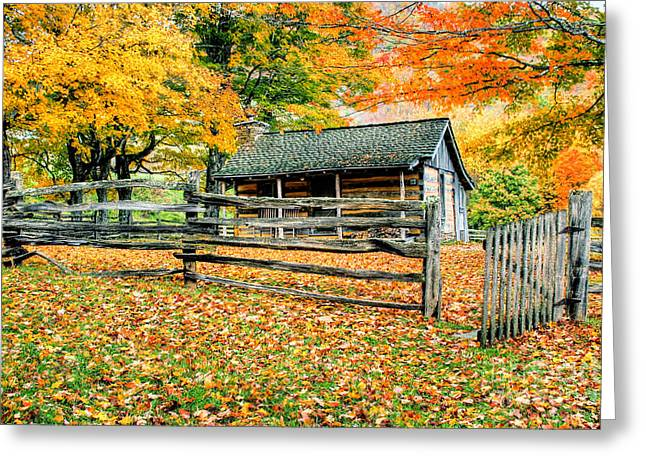 Cabin In The Woods Greeting Card by Darren Fisher