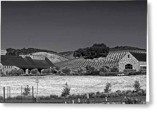 California Vineyard Greeting Cards - California Winery And Vineyard Greeting Card by Mountain Dreams