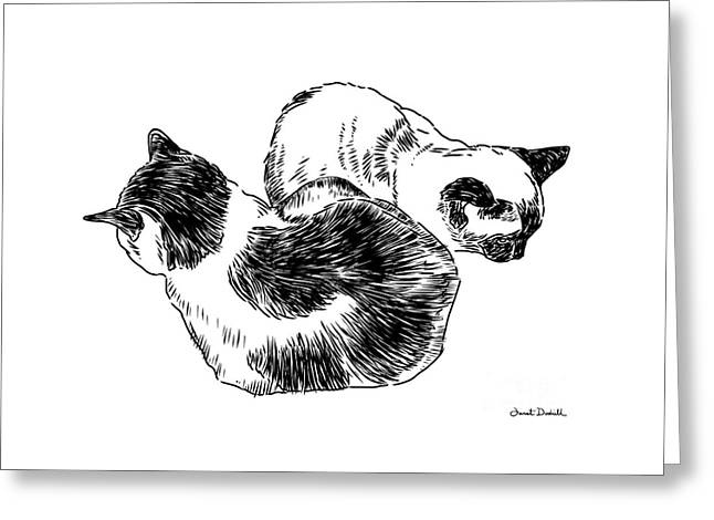 Tablets Drawings Greeting Cards - 2 Cats Greeting Card by Janet Dodrill