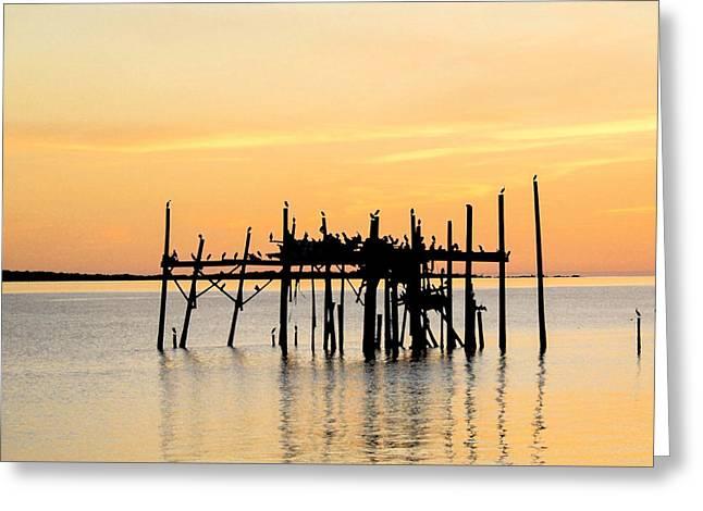 Cedar Key Greeting Cards - Cedar Key Sunset Greeting Card by Charlotte Johnson