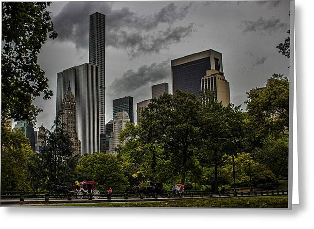 Central Park Greeting Card by Martin Newman