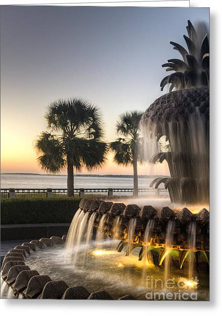 Charleston Greeting Cards - Charleston Pineapple Fountain Sunrise Greeting Card by Dustin K Ryan