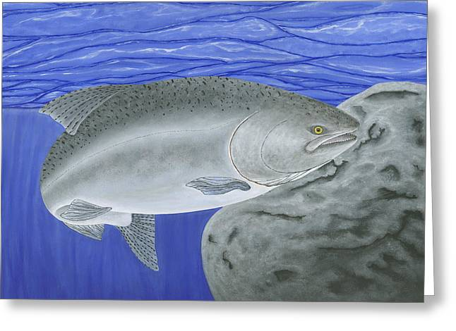 Chinook Salmon Greeting Cards - Chinook Salmon Greeting Card by Ralph Martens